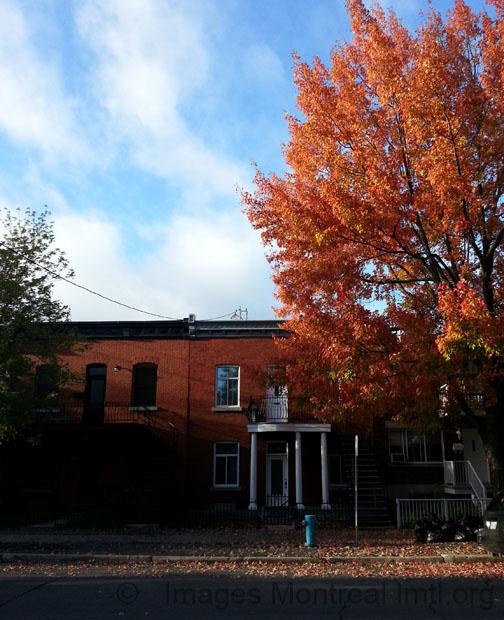 Fall on saint vallier street montreal for Piscine vallier